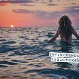 The Hedgehog - Showrocker 387 - 24.05.2018
