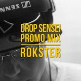 Drop Sensei Promo Mix vol. 4 - Rokster