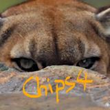 chips4
