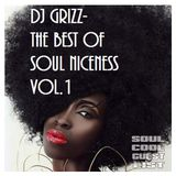 Soul Cool Records/ DJ Grizz - Best of Soul Niceness