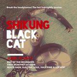 ShiKung - Black Cat - June 15 2017 - Last Fortnightly Session - End of the Beginning