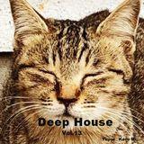 Cafe Gatto / Deep House Vol.13