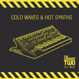 Cold Waves & Hot Synths