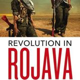 Revolution in Rojava - author Ercan Ayboga on Democractic Conferderalism & Womens libertion