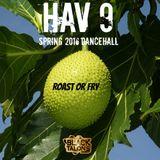 HAV 9 (Spring 2016 Dancehall) RAW