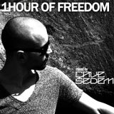 1 hour of freedom mixed by Cave Sedem