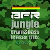 FYAH FYAH d&b mix (BFR setpreview 2012)