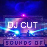 Dj Cut In The Mix Live @ Fun Factory Wildeshausen / 22.02.2014