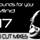 DJ CUT pres. Sounds for your Mind 017