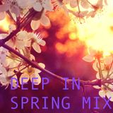 DEEP IN SPRING MIX