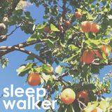 The Apricot Pillow - Sleepwalker June 26, 2014