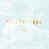Spectrasoul Spotlight / Shadowbox @ Radio 1 07/06/2015