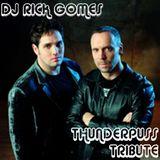 Dj Rick Gomes - Thunderpuss Tribute