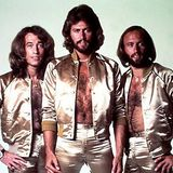 The Bee Gees collection