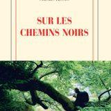 L'instant critique Sylvain Tesson - Sur Les Chemins Noirs