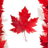 Nikolas a happy na Radiu R na téma - Kanada
