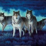Clan Of The Dancing Wolves Mix-DJ Apache