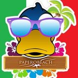 Diretta live Papero Beach - 22 Giugno 2012