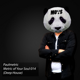 Metric of Your Soul - 014  (Deep house)