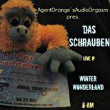 DasSchrauben live @ WinterWonderland 22.12.2012 - 8am