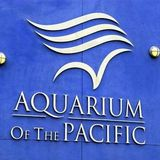Aquarium of the Pacific (2016)