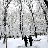 SOUNDPROFILE-Winter Tales Vol.II_December 2012