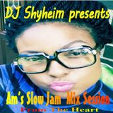 DJ Shyheim presents Am's Slow Jam Mix From the Heart