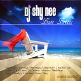 Dj Shy Nee - Bass Breeze