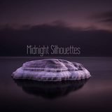 Midnight Silhouettes 1-24-20