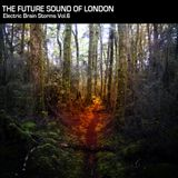 Electric Brain Storm Vol. 6 part 1 - The Future Sound Of London