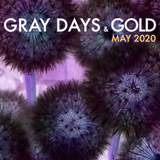 Gray Days and Gold - May 2020