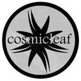 #9 Discovering Cosmicleaf.com | mix by Side Liner |