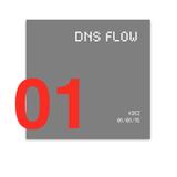 DNS FLOW : Kiez (01/01/2015)