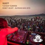 wAFF - Robot Heart - Burning Man 2013