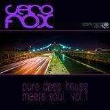 apartment 9 /// Seko Fox - Pure Deep House meets Soul Vol.1