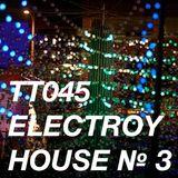 TT045 - ElecTroy House № 3