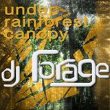 under rainforest canopy - dj forage
