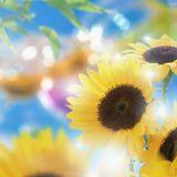 Ben Mitchell - Summer 2012 mix