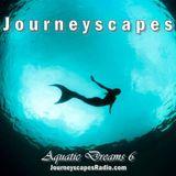 PGM 205: Aquatic Dreams 6