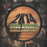 Andu Andrey - Madness Summer Vibes 2k14