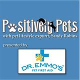 Reading to pets and looking back at 2011 with Stacy Mantle