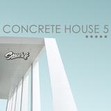 Concrete House 5