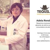 """Adela Rendón """" Alteración en ADN en jóvenes consumidores de alcohol"""",  Feria de Turismo Ecuestre."""