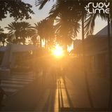 Rudy Lime Salutes #019 - The Palm Tree Sunset