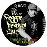 Dj BCAT-Reggae festival 2015 promo mix