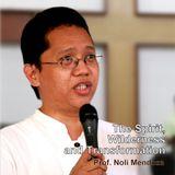 The Spirit, Wilderness and Transformation - Prof. Noli Mendoza