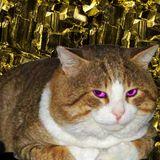 Die Katze aus Duisburg Nr. 15 w/ KSR1