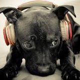 DJ Diabolo & DJ SoliD 15-03-2015
