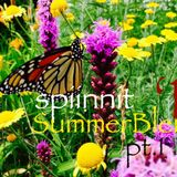 spiinnit-SummerBlend'19-pt.1