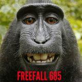 FreeFall 685